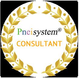 cert-pneisystem-consultant