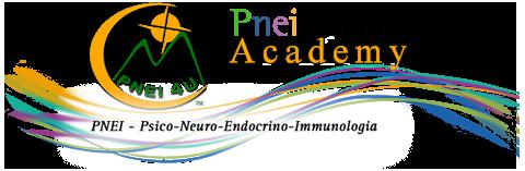Pneisystem Accademy